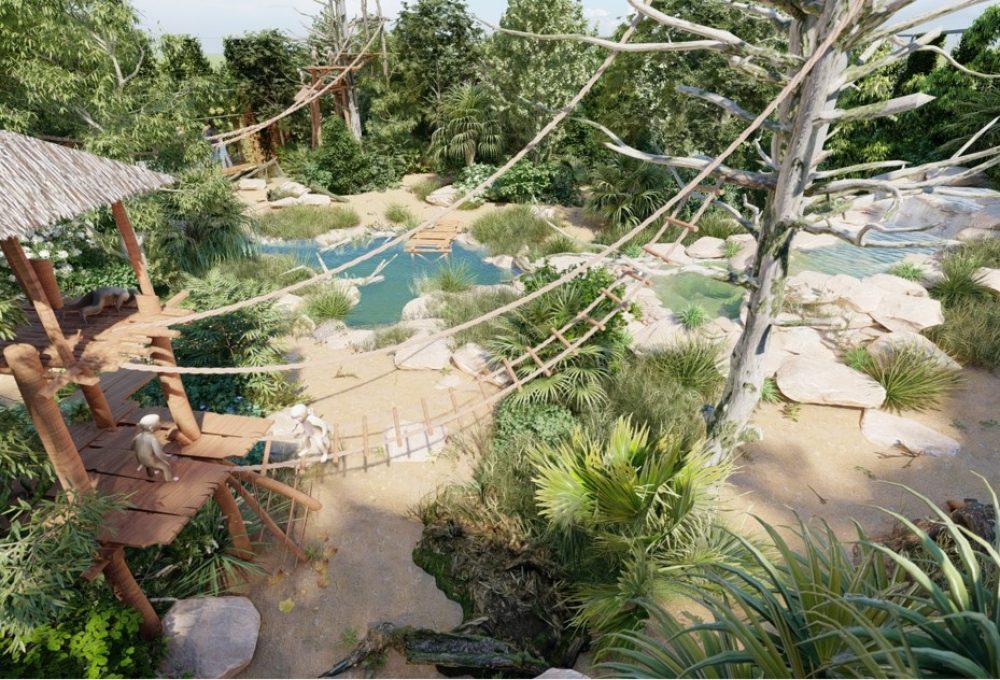 voliere-fourmilier-saïmiri-parc-zoo-de-la-fleche-paysagiste - crédit landscape-consulting[4958]